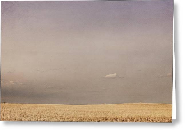 Minimalist Landscape Of A Prairie Grain Greeting Card by Roberta Murray