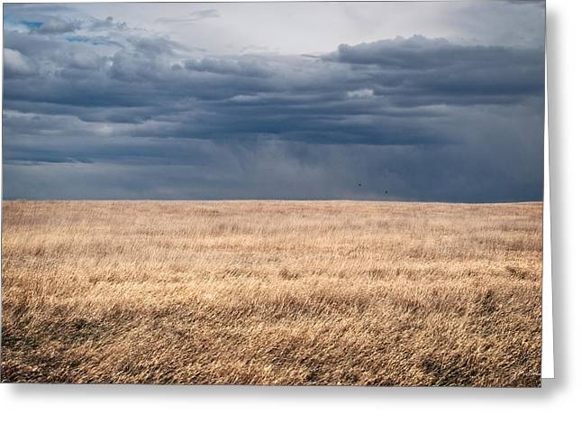 Minimalist Prairie Grassland With Stormy Sky Greeting Card by Julie Magers Soulen