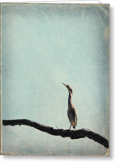 Minimalist Vintage Inspired Green Heron On Pale Blue Sky Greeting Card