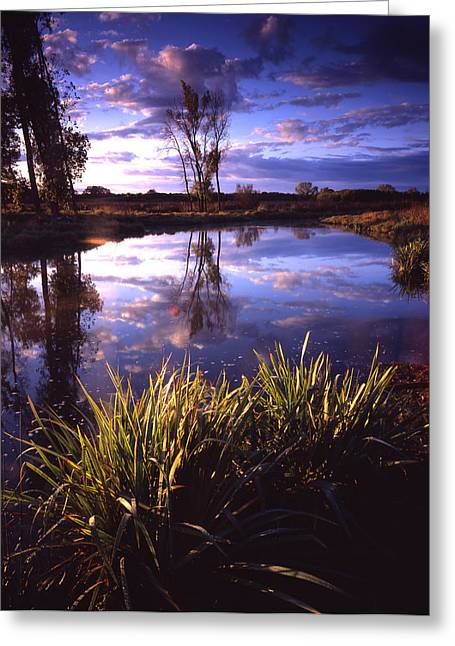 Miraculous Morning Greeting Card by Ray Mathis