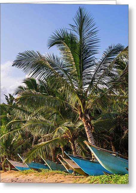 Mirissa Beach, Traditional Sri Lanka Greeting Card by Matthew Williams-ellis