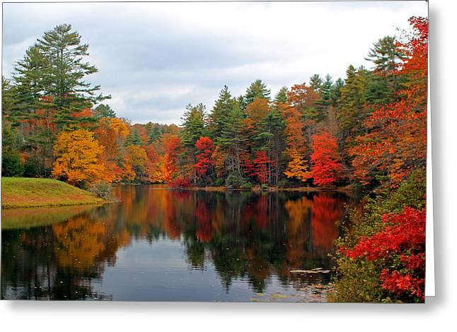 Mirrored Lake Greeting Card