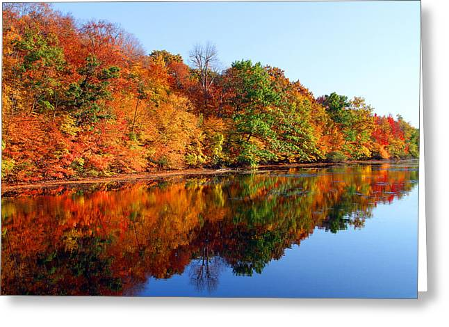 Mirrored Palette Greeting Card by James Hammen