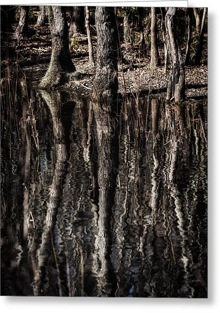 Greeting Card featuring the photograph Mirrored Trees by Zoe Ferrie