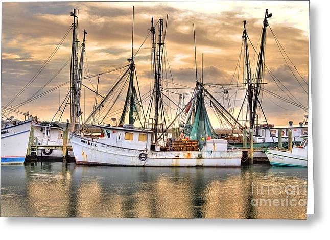 Miss Hale Shrimp Boat Greeting Card