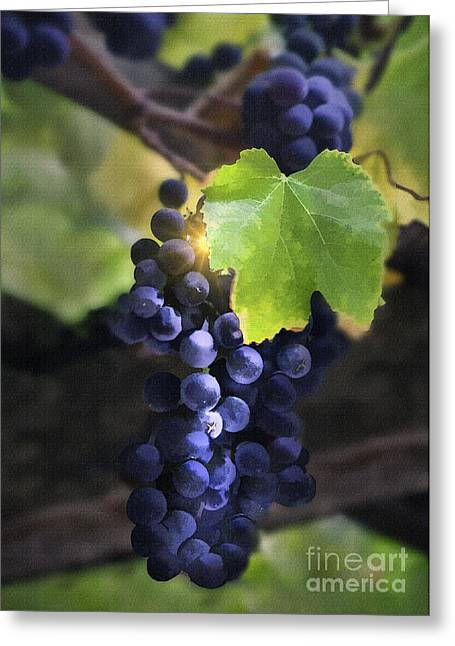 Mission Grapes II Greeting Card