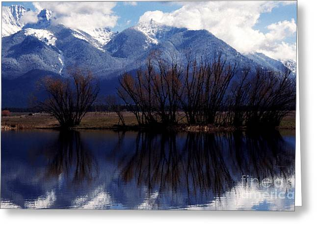 Mission Mountains Mission Valley Greeting Card by Thomas R Fletcher