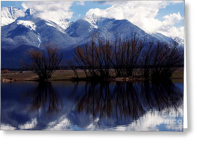 Mission Mountains Montana Greeting Card by Thomas R Fletcher