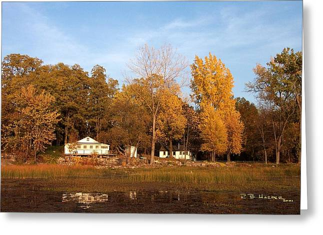 Missisquoi Bay Camps Greeting Card