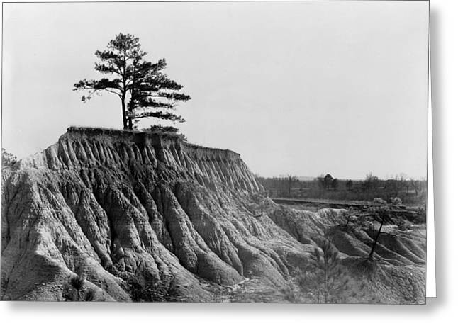 Mississippi Erosion, 1936 Greeting Card by Granger