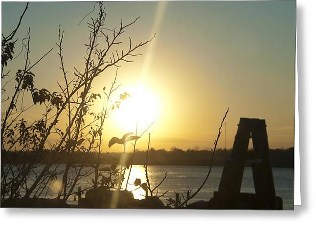 Greeting Card featuring the photograph Mississippi River Sunset by Ray Devlin