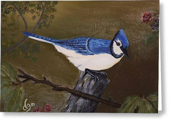 Missouri Blue Jay Greeting Card