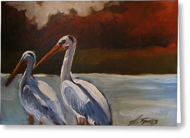 Missouri River Pelicans Greeting Card