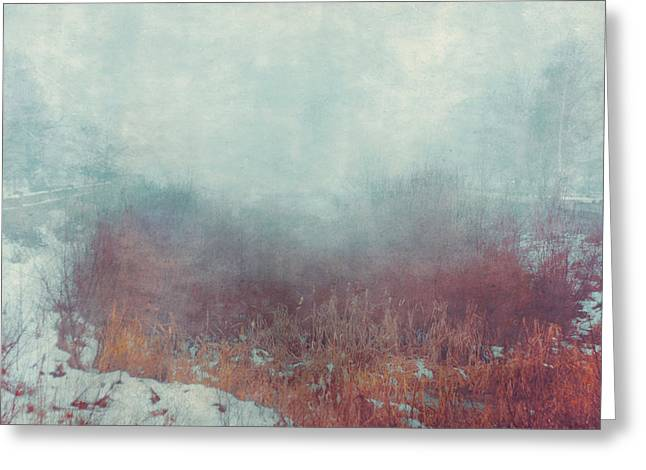 Mist 5874 Greeting Card by Violet Gray