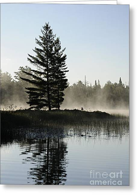 Mist And Silhouette Greeting Card by Larry Ricker