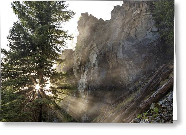 Mist From Holland Falls Is Backlit Greeting Card