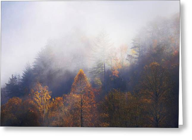 Mist In Mountains Greeting Card by Dorothy Walker