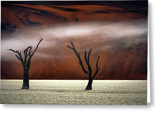 Mist In The Desert Greeting Card