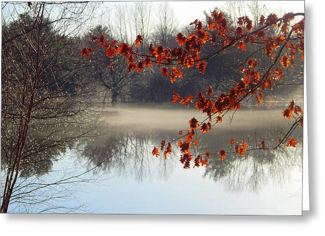 Mist Of The River Greeting Card