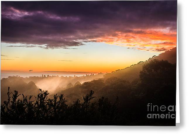 Mist Rising At Dusk Greeting Card