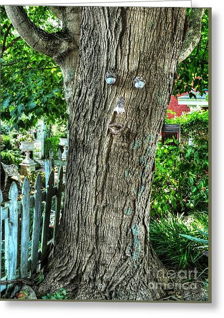 Mister Tree Greeting Card by Mel Steinhauer