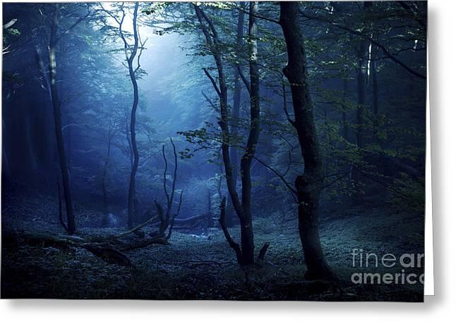 Misty, Dark Forest, Liselund Slotspark Greeting Card by Evgeny Kuklev