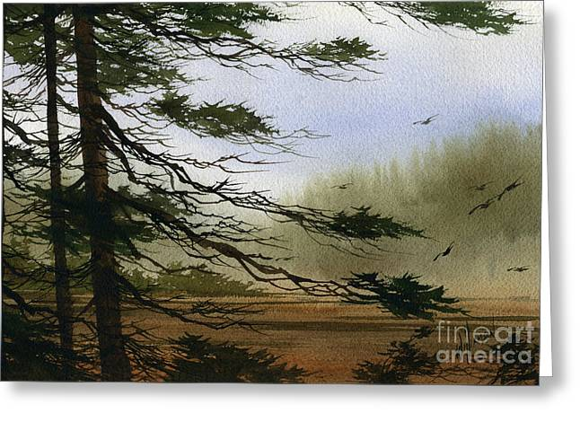 Misty Forest Bay Greeting Card