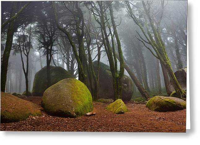 Misty Greeting Card by Jorge Maia
