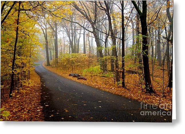Misty Minnesota Mile Greeting Card