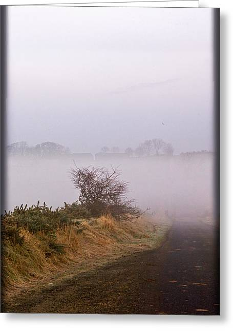 Greeting Card featuring the photograph Misty Morn by Liz  Alderdice