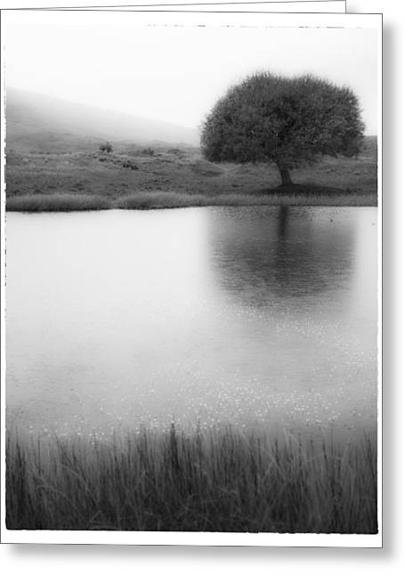 Misty Morning By The Pond Greeting Card by Cristel Mol-Dellepoort