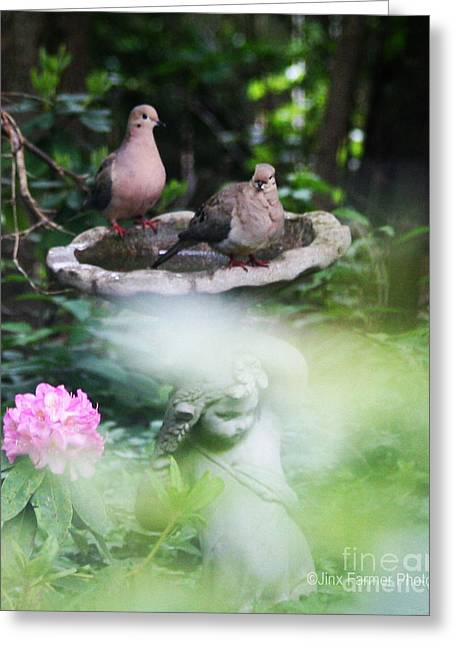 Misty Morning Doves Greeting Card by Jinx Farmer