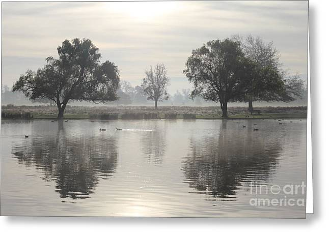 Misty Morning In Bushy Park London 2 Greeting Card