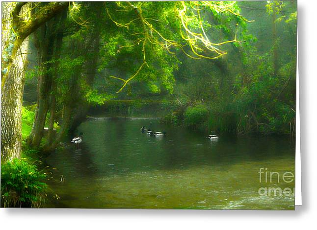 Misty Morning In Clatford Greeting Card
