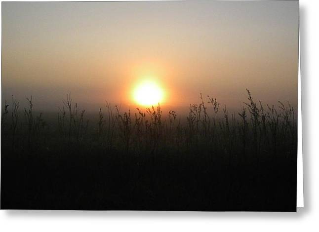 Misty Morning Greeting Card by James Petersen