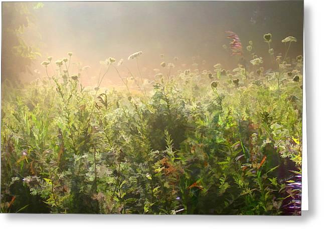 Misty Morning Greeting Card by John Robichaud