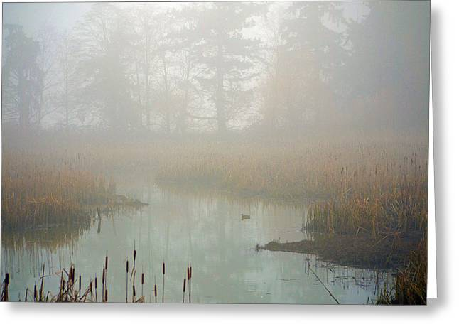 Greeting Card featuring the photograph Misty Morning by Jordan Blackstone