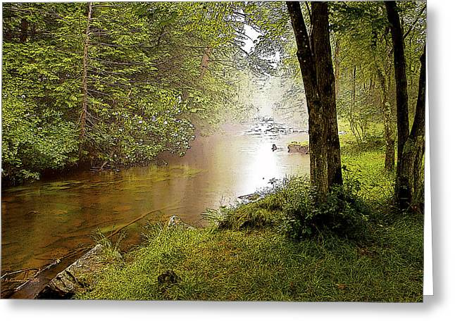 Misty Morning On A Mountain Stream Digital Art Greeting Card