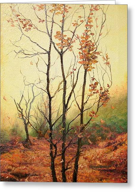 Misty Morning Greeting Card by Sorin Apostolescu