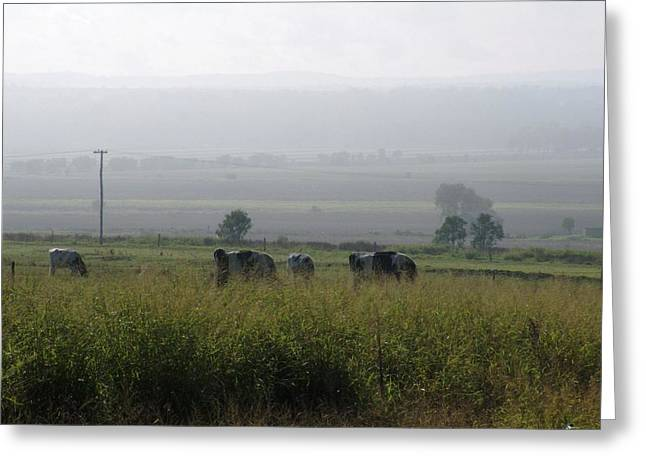 Greeting Card featuring the photograph Misty Morning by Therese Alcorn