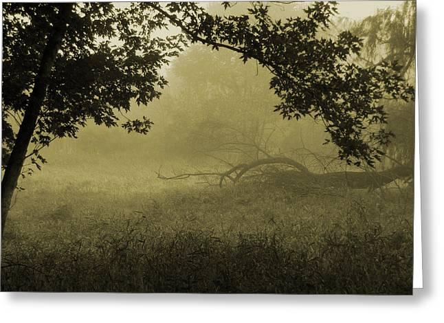 Misty Morning Tuesday Greeting Card