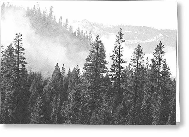 Misty Mountain Greeting Card by Frank Wilson