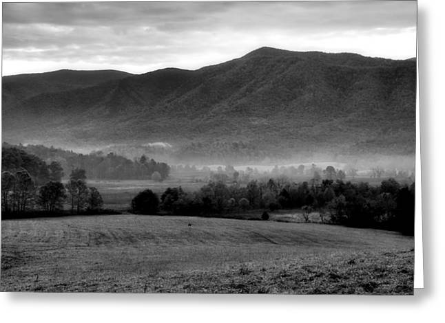 Misty Mountain Morning Greeting Card by Dan Sproul
