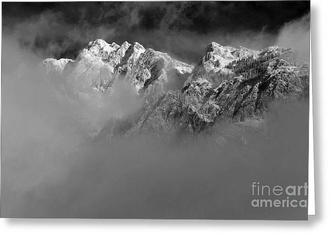 Misty Mountains In Mono Greeting Card