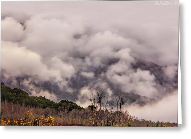 Greeting Card featuring the photograph Misty Mountains by Wallaroo Images