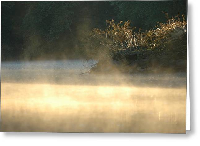 Misty Sunrise Greeting Card by Robert Culver
