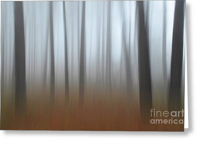 Greeting Card featuring the photograph Misty Thoughts by Simona Ghidini