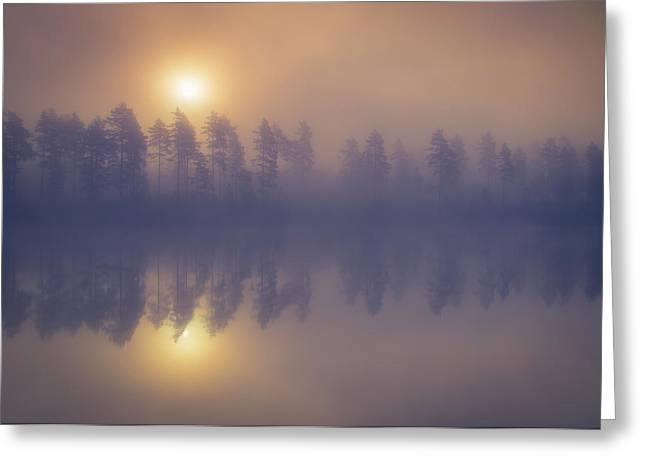 Misty Trees Greeting Card