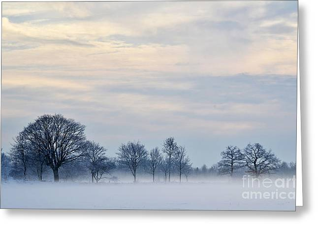 Greeting Card featuring the photograph Misty Winter Day by Kennerth and Birgitta Kullman