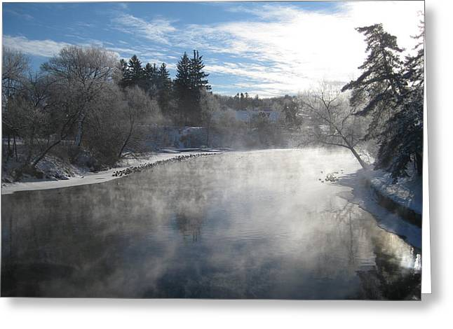 Misty Winter View Greeting Card by Carolyn Reinhart